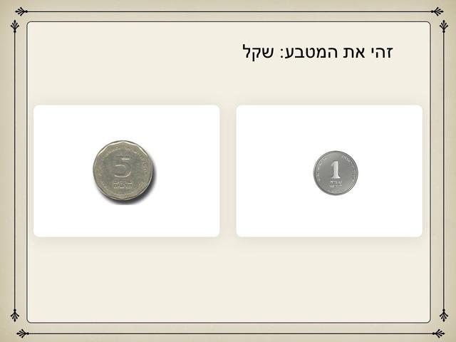 זהה את המטבע by Efrat Moses