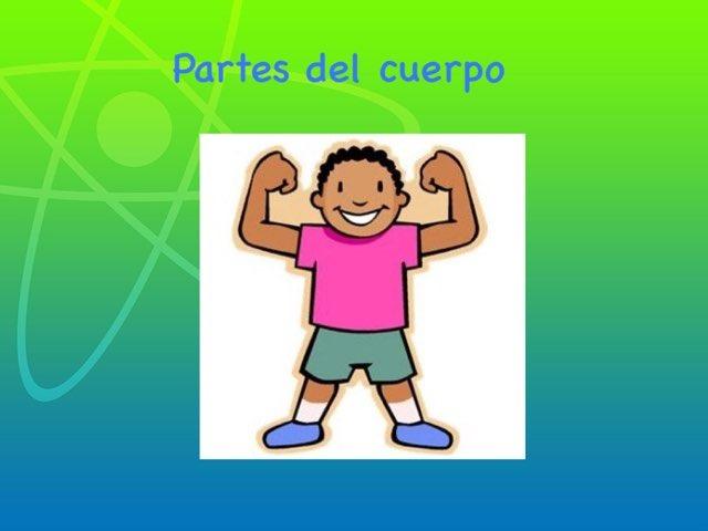 Las Partes Del Cuerpo by Estefanía Vega Cid