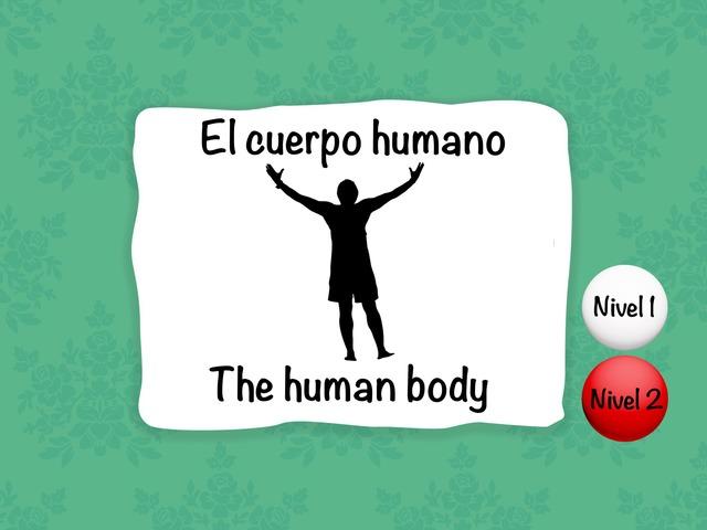 Cuerpo Humano / Human Body by Sergio Mesa Castellanos