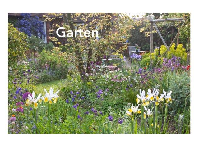 Im Garten by Bea Hodel