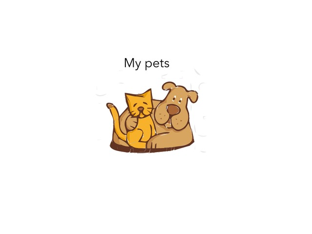 My Pets by MOLLY THOMPSON