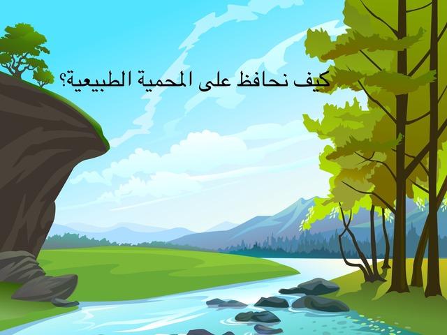 محمية صباح الاحمد by Mariam Ahmed
