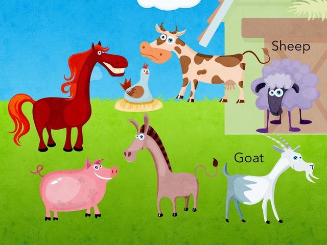 Farm Animals by Danika hill