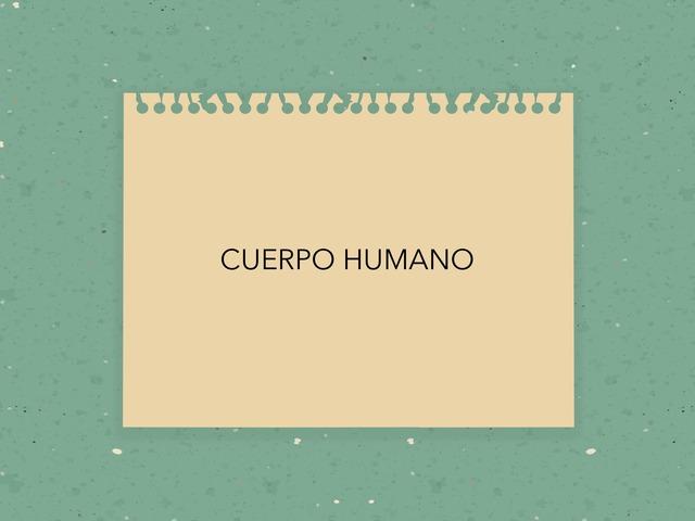 CUERPO HUMANO by LAURA PARDO