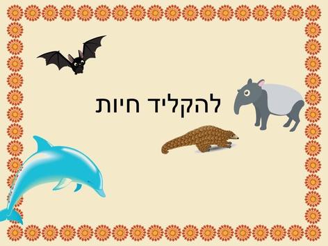 הקלדה חיות by Beit Issie Shapiro