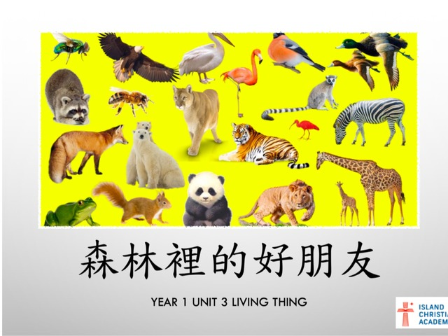 Year 1 Unit 3 Living Things 森林裏的好朋友 by Hui Ling Zhao