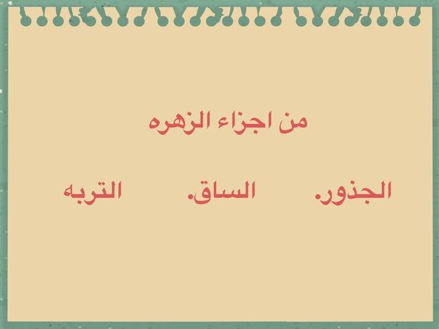 تجريبي  by الهام الزهراني