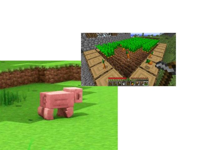 minecraft pig wil een wortol by danny zoetemijer