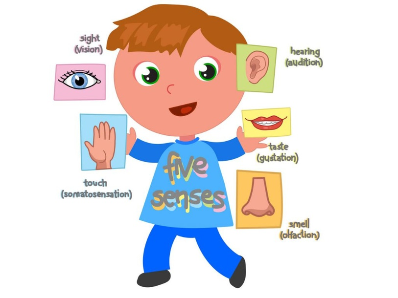 5 Senses by Ayelén Ramos