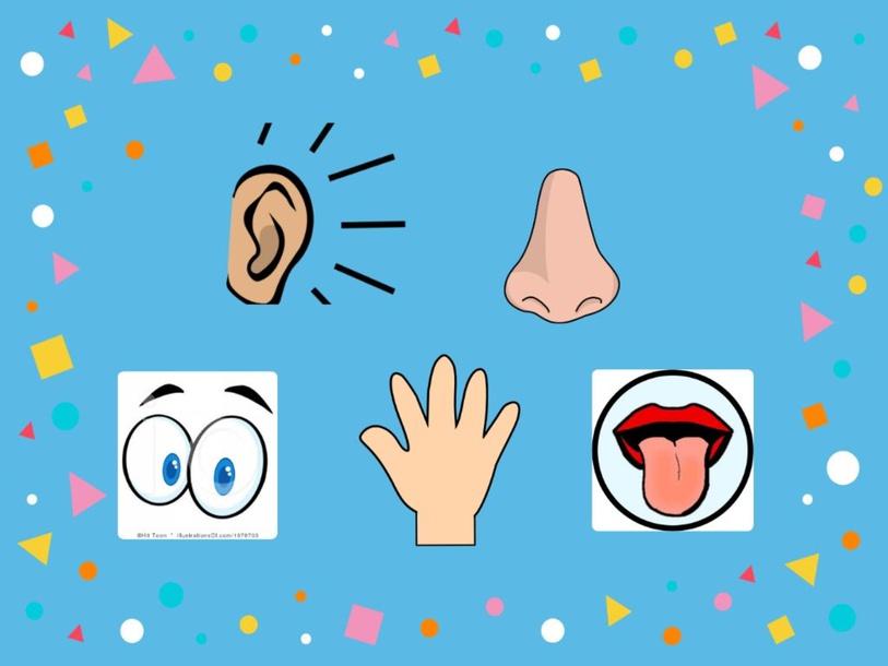 5 senses by Leah Kuhl