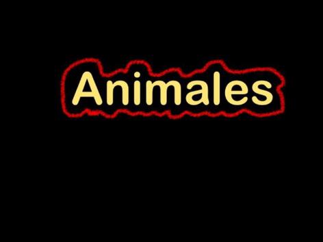 CVI: Animales (Spanish Version) by Eunice Ramirez
