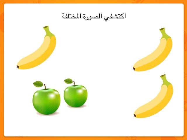 المفرد والمثنى by see laife
