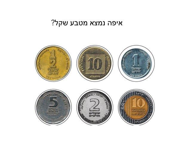 מטבעות by אורית פלד