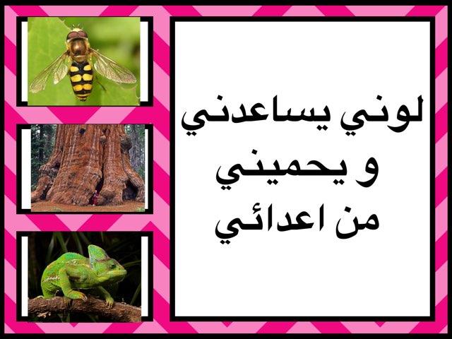 التكيف by Kawthar Alsarraf