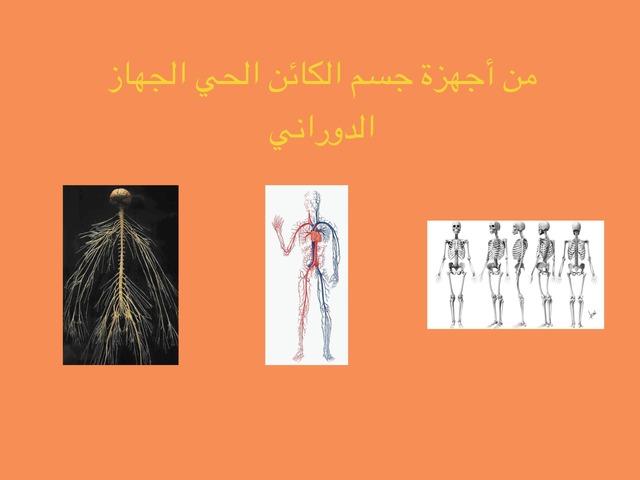 الصف الرابع الفصل الاول الوحدة الثالثة  by علي الزهراني