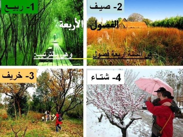 فصول السنة by הבאא עבדאלרחמאן