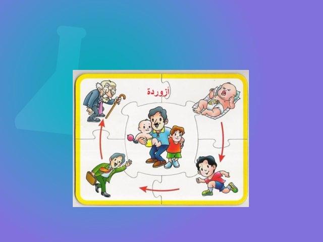 لعبة ترتيب مراحل نمو الانسان By Abla Fatma Educational Games For Kids On Tinytap