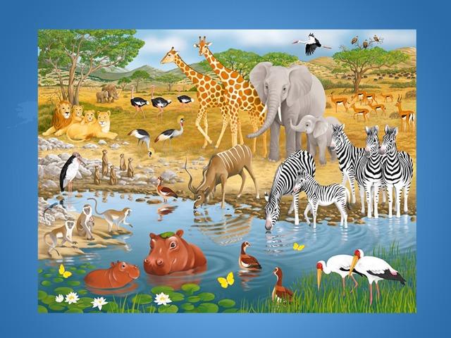 Животные Саванны by Alex