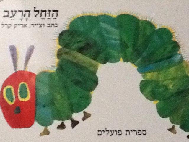 הזחל הרעב by Hadas Goldfein