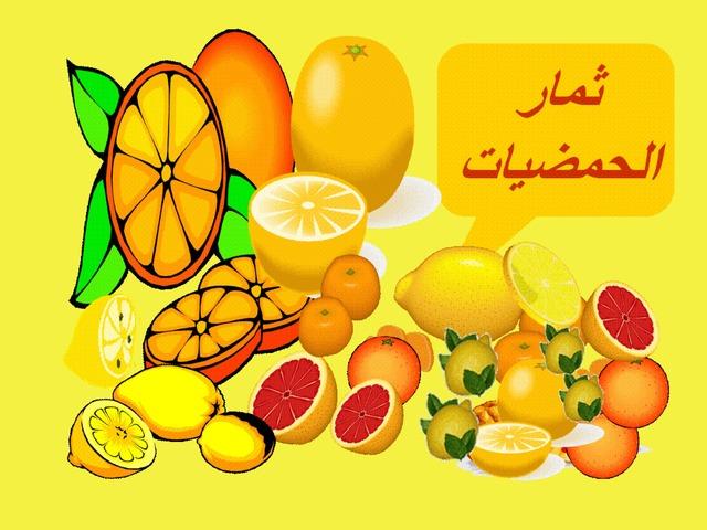 ثمار الحمضيات by סלסביל אלעמור
