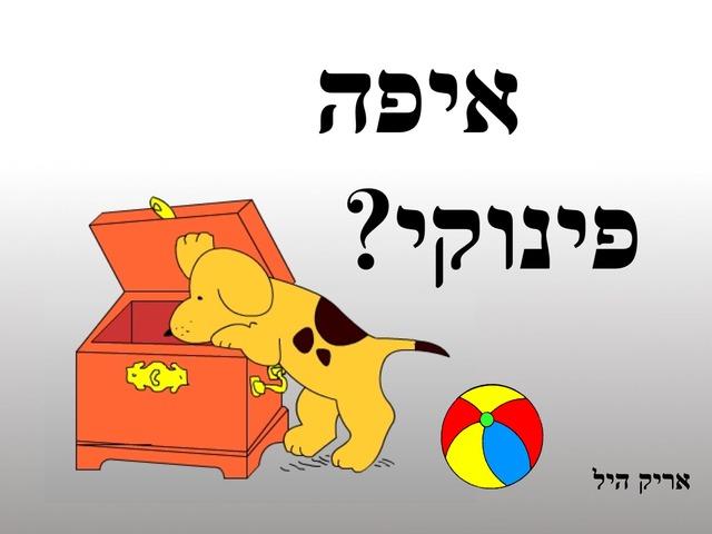 איפה פינוקי? by Hen Kalimian