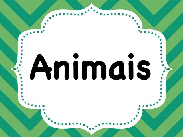Animais by Inês Ruxa