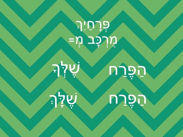 כינויי שייכות by Na'ama Zaken