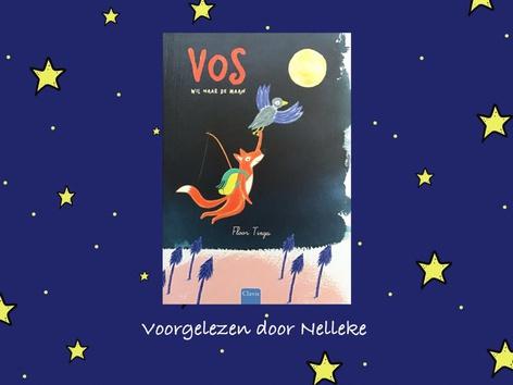 Vos wil naar de maan by Nelleke Lürsen