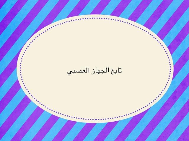 درس الجهاز العصبي by نورة أحمد