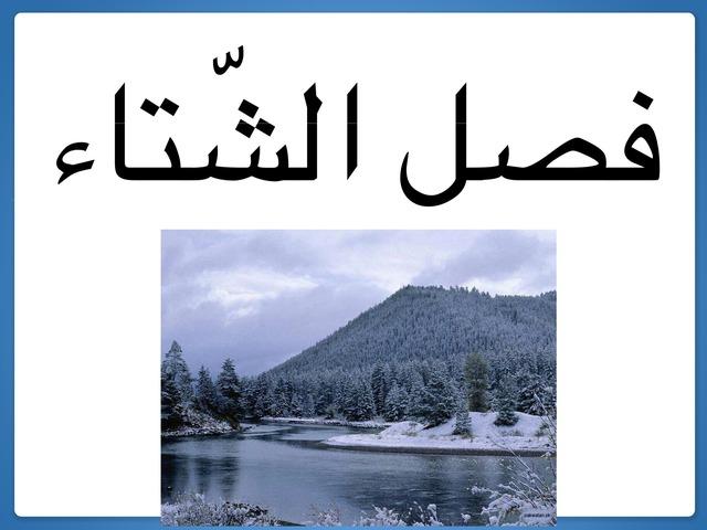 فصل الشتاء by sana hamdan