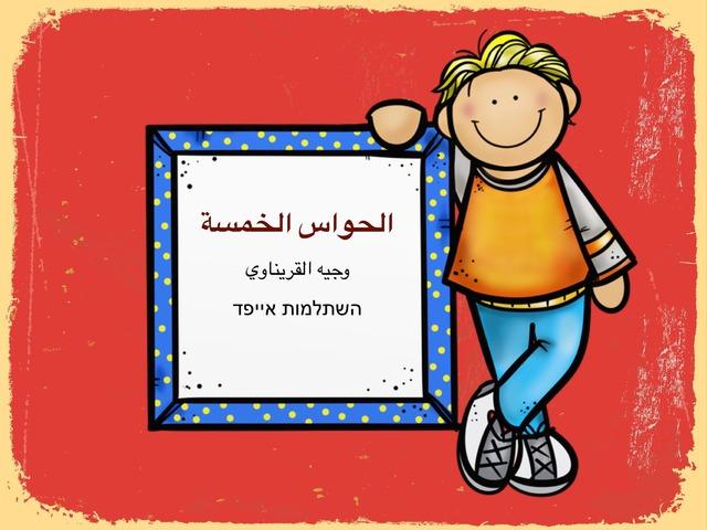 الحواس الخمسه by Marwa Freeh