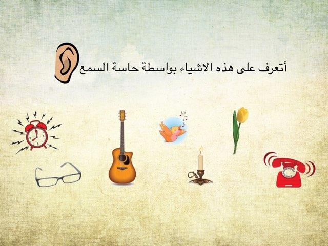 الحواس by afnan fa