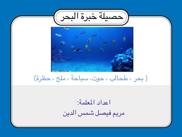 حصيلة البحر by Mariam Shamsaldeen