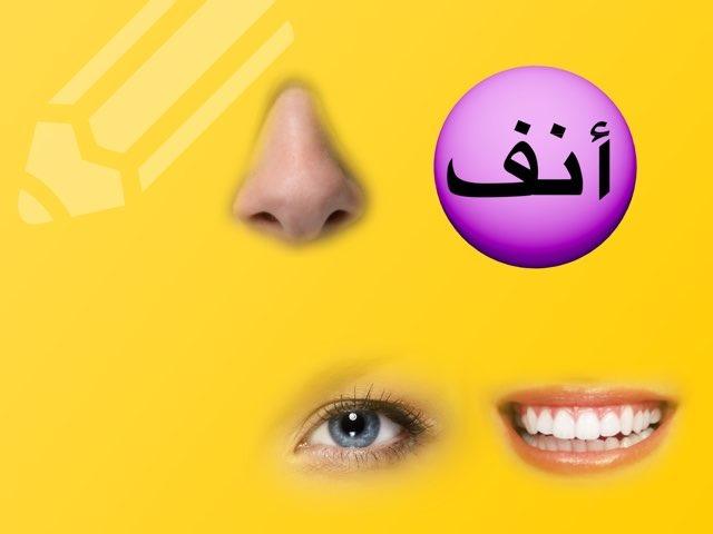 تجريد كلمة -أنف by Rgooya Alm