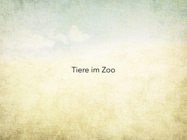 Tiere im Zoo  by Nadja Blust