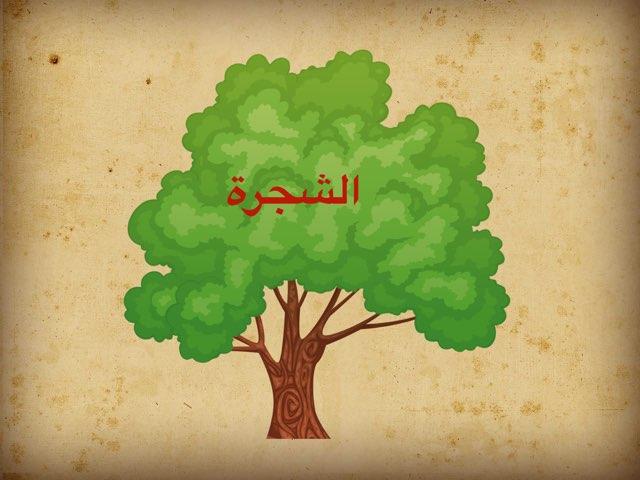تجربة by Wadiha Alkhibari