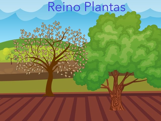 As Plantas by Lucia Rumbo Lago