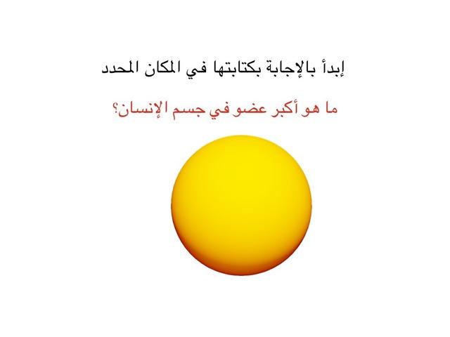 طبقات الجلد by Ammar Alawadh