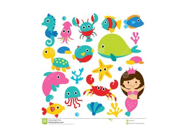 海洋动物 by Suwen He