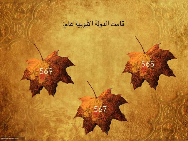 صلاح الدين الأيوبي  by Muna Al-saqatri
