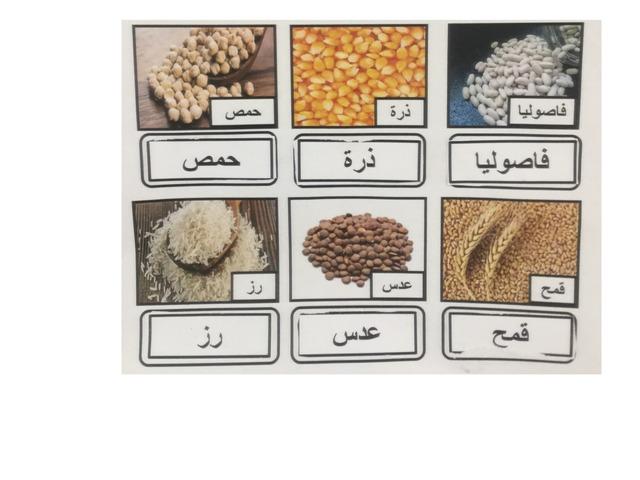 الحبوب by Farah G. Dibbini