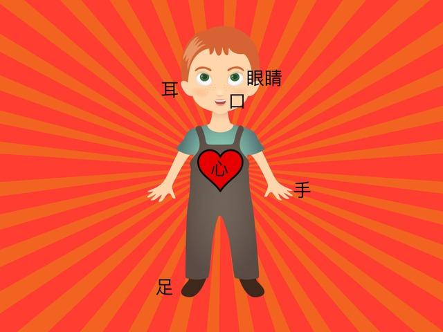 身體部位認字 by Chinese International School Reception
