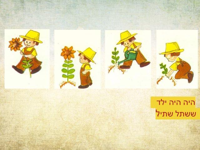 משחק 55 by Roni Shalom