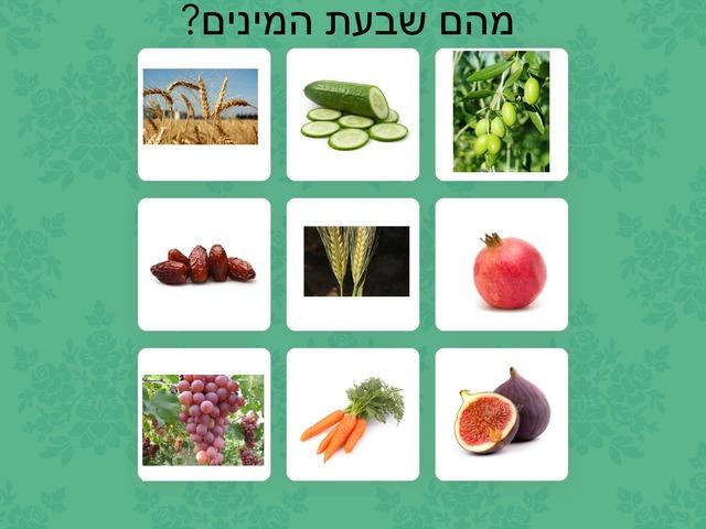 שבעת המינים שני וסימונה by סימונה שטיינברכר