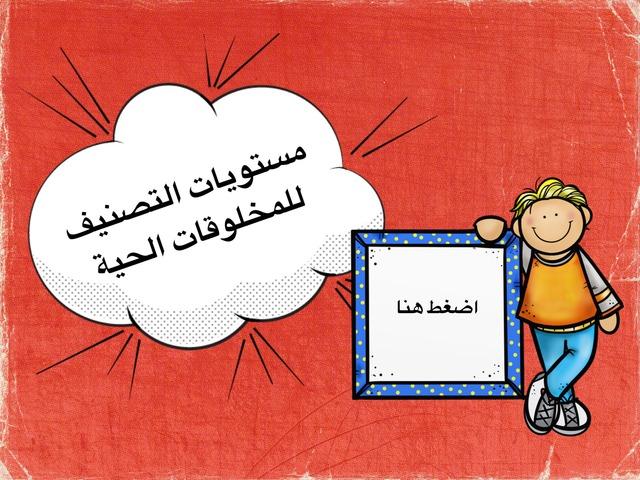 مستويات التصنيف - خامس by ali abdullah