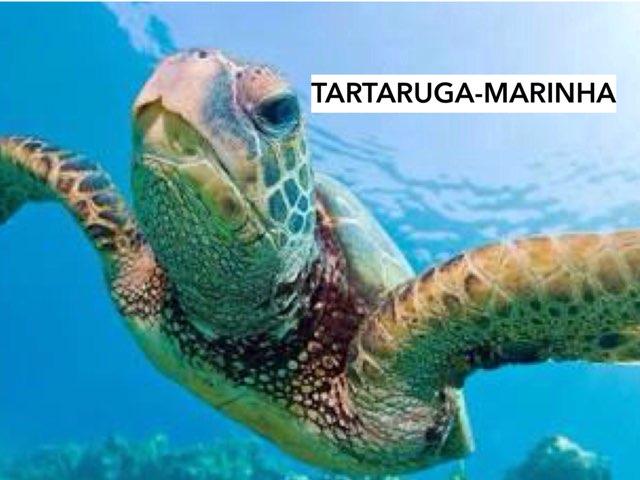 TARTARUGA-MARINHA by Renata Giovannelli
