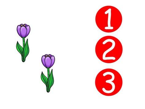 Bloemen Tellen Tot 3 by Zeesterren De Parel