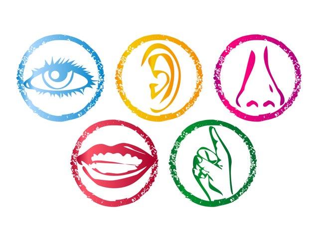 5 Senses, Hearing Game by Louise Ng