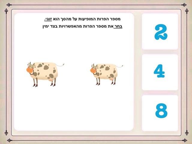 למידת מספרים זוגיים עד המספר 8 by Milana Isakov