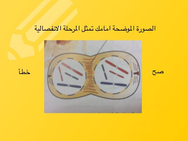 لعبة 10 by Shaimaa Mohammed